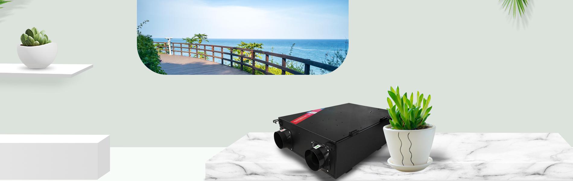 Fresh air purifier